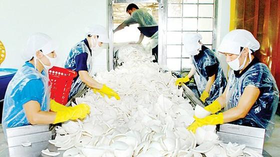 Thu hút thêm 80.000-100.000 doanh nghiệp đầu tư vào nông nghiệp ảnh 2
