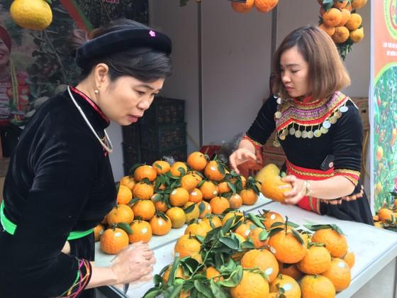 """Trăm loại đặc sản """"khoe hương"""" tại hội chợ xuân 2019 ảnh 5"""