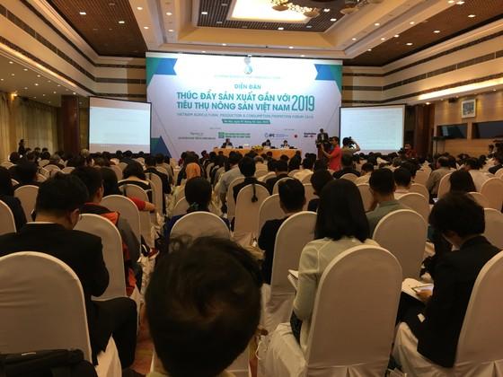 Nông nghiệp Việt Nam đối mặt 5 thách thức năm 2019 ảnh 1