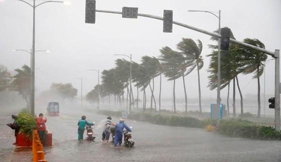 Năm nay, có 10-12 cơn bão muộn, xâm mặn và hạn hán sẽ kéo dài ảnh 1