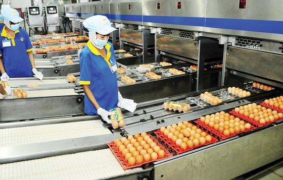 Kiểm tra năng lực sản xuất tại các doanh nghiệp bình ổn ảnh 1