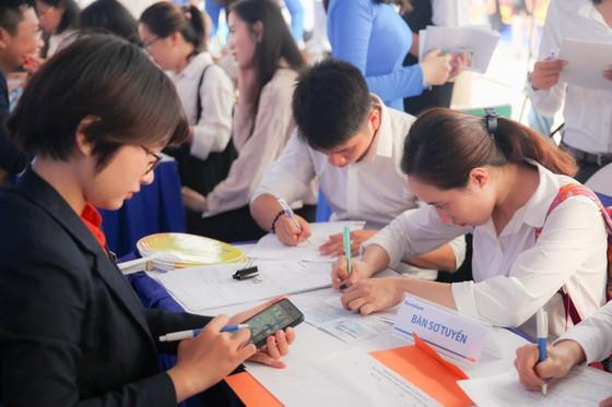 Tuyển dụng hơn 500 việc làm cho sinh viên khối ngành kinh tế  ảnh 1