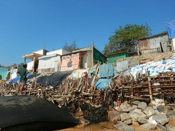 """Người dân Phan Thiết căng mình cứu nhà sắp bị biển """"nuốt chửng"""" ảnh 6"""