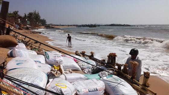 Cần hỗ trợ khẩn cấp cho người dân vùng bị biển xâm thực ảnh 3