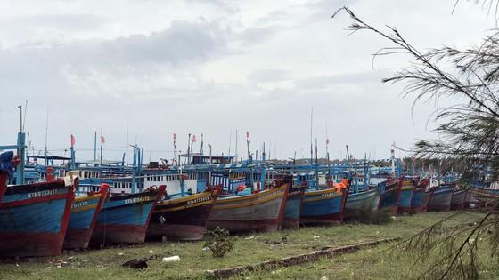 Người dân đảo Phú Quý căng mình chống bão số 9 sắp đổ bộ ảnh 4