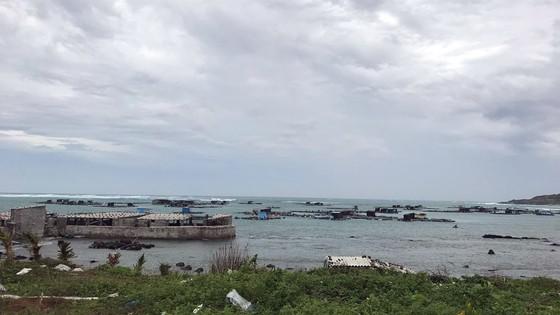 Người dân đảo Phú Quý căng mình chống bão số 9 sắp đổ bộ ảnh 1