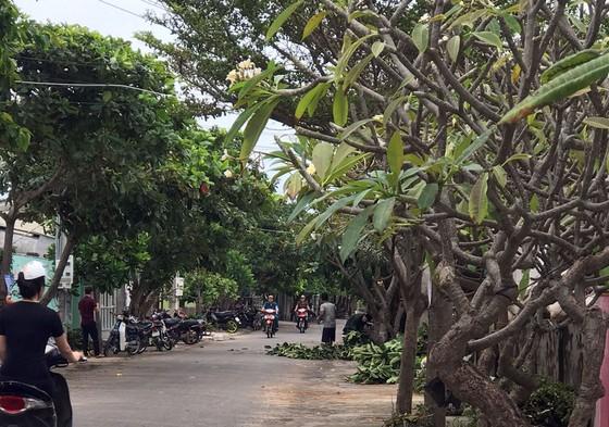 Người dân đảo Phú Quý căng mình chống bão số 9 sắp đổ bộ ảnh 2