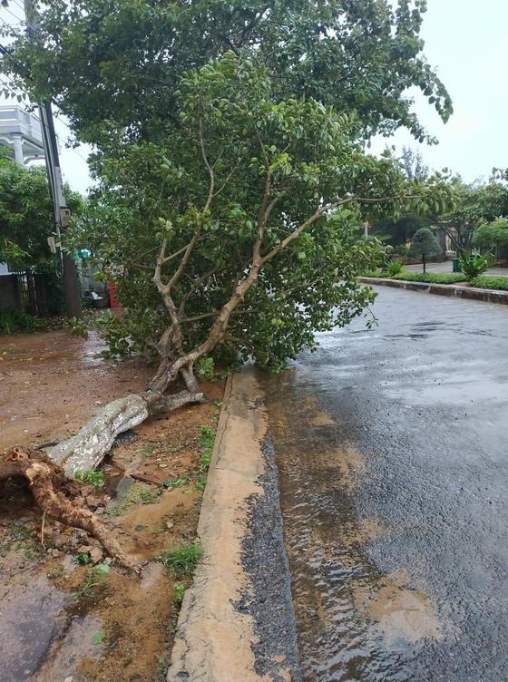 Đảo Phú Quý mưa lớn, nhà nghỉ, khách sạn mở cửa miễn phí cho người dân trú bão ảnh 3