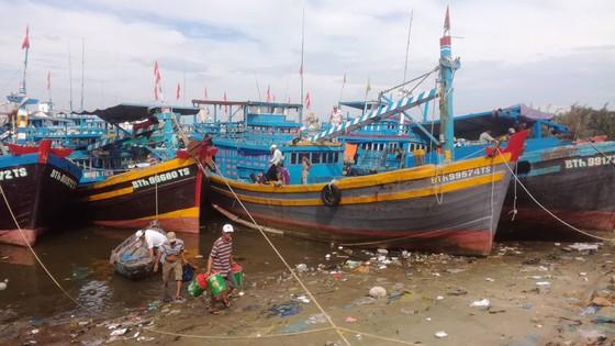 Ngư dân Bình Thuận tất bật chuẩn bị ra khơi sau bão ảnh 3