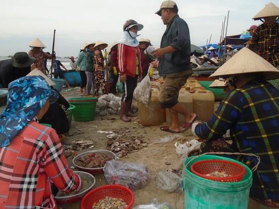 Ngư dân Mũi Né được mùa sò điệp, giá một ký chỉ bằng một gói mỳ tôm ảnh 5