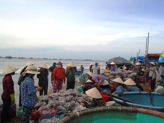 Ngư dân Mũi Né được mùa sò điệp, giá một ký chỉ bằng một gói mỳ tôm ảnh 1