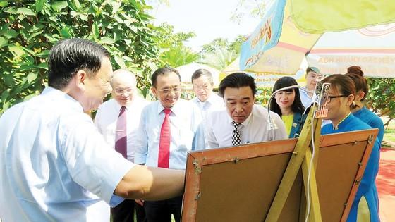 Phát triển bền vững nghề nuôi chim yến tại Việt Nam ảnh 1