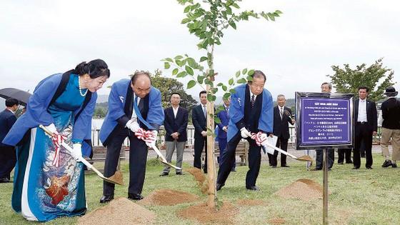 Thúc đẩy hoạt động ngoại giao  nhân dân Việt Nam - Nhật Bản ảnh 1