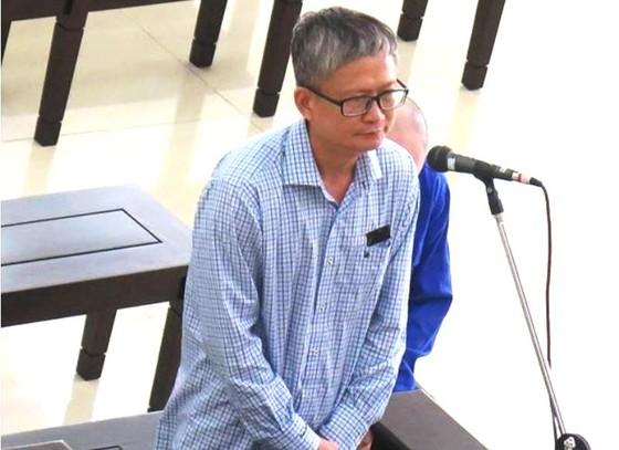 Em trai ông Đinh La Thăng hầu tòa phúc thẩm vụ tham ô ở PVP Land ảnh 1