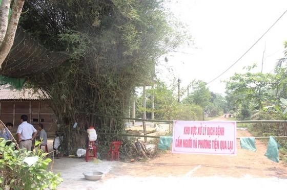 Xuất hiện ổ dịch tả heo châu phi thứ 3 tại một xã ở Thừa Thiên – Huế ảnh 1