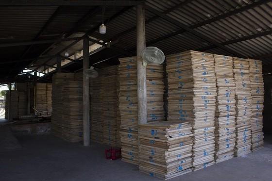 Hàng trăm tấn cá khô ứ đọng tại Quảng Trị ảnh 3