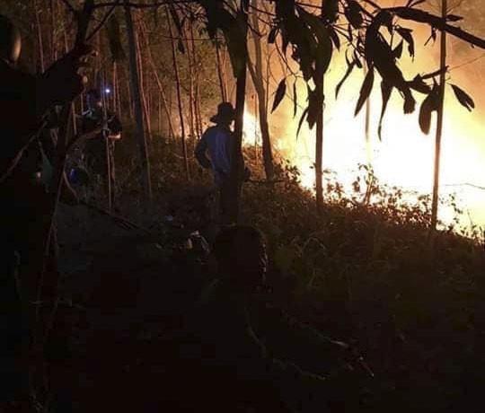 Cháy rừng ở Quảng Trị, hàng trăm người dập lửa  ảnh 1