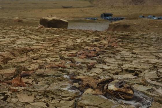Hồ thủy lợi cạn nước, thủy điện dừng phát điện ảnh 4