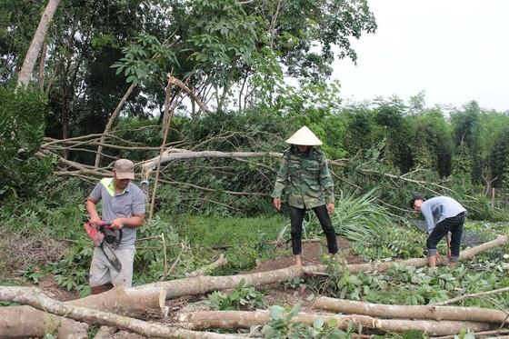 Lốc xoáy kèm mưa lớn ở Bình Phước gây thiệt hại hàng tỷ đồng ảnh 1
