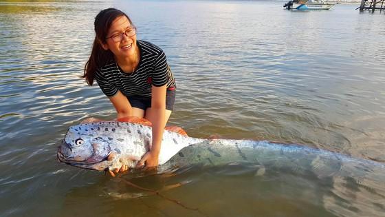Cá mái chèo dài 3m bơi vào bờ biển Hà Tĩnh ảnh 2
