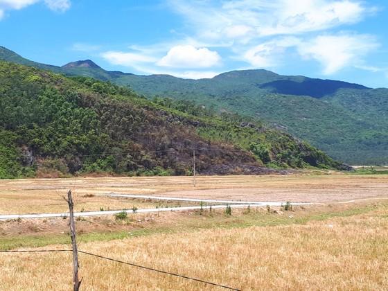 Nắng nóng gay gắt kéo dài ở Hà Tĩnh, nguy cơ cháy rừng cao  ảnh 6