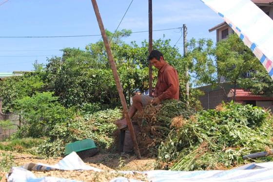 Nắng nóng gay gắt kéo dài ở Hà Tĩnh, nguy cơ cháy rừng cao  ảnh 1