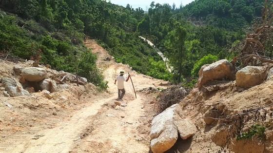 Nắng nóng gay gắt kéo dài ở Hà Tĩnh, nguy cơ cháy rừng cao  ảnh 5