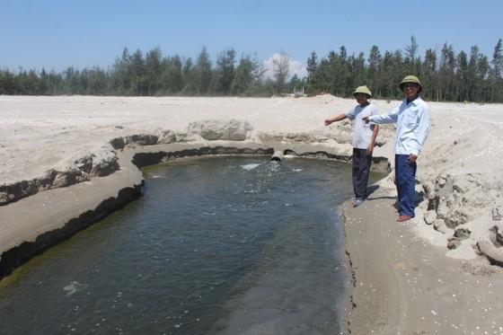Phạt 435 triệu đồng dự án nuôi tôm xả thải gây ô nhiễm môi trường  ảnh 2