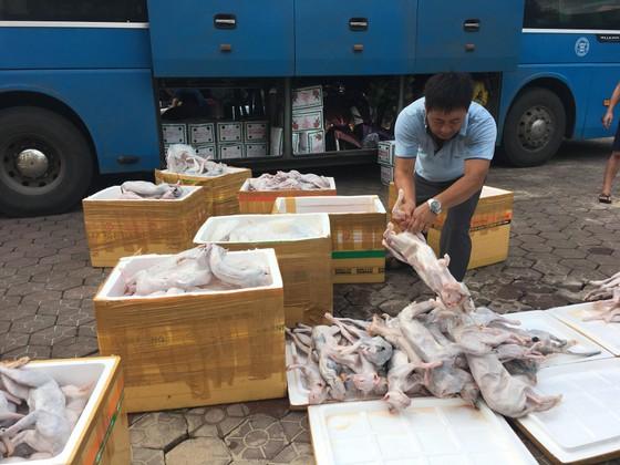 Bắt giữ xe khách vận chuyển hơn 900kg thịt mèo không rõ nguồn gốc ảnh 1