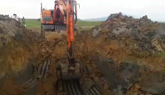 """Tiêu hủy 97 con heo bị lở mồm long móng được xe tải vận chuyển """"lọt"""" qua nhiều tỉnh ảnh 1"""