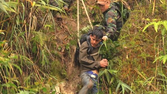 Bắt vụ vận chuyển 60.000 viên ma túy tổng hợp từ Lào vào Việt Nam ảnh 1