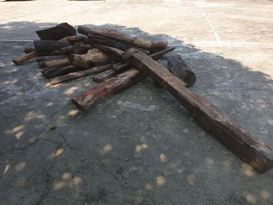 Phát hiện vụ vận chuyển động vật hoang dã và gỗ trắc trái phép ảnh 5