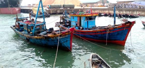 Đã trục vớt thành công 2 tàu bị chìm ở cảng biển Vũng Áng ảnh 2