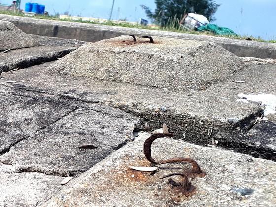 Clip: Bẫy chông ở Khu du lịch biển Xuân Hải ảnh 3