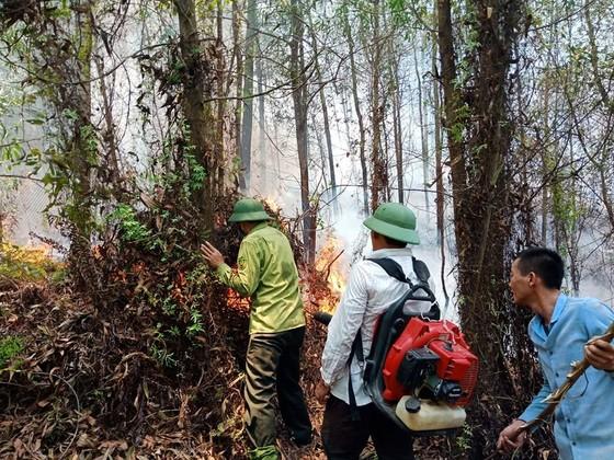 Lại xảy ra cháy rừng tại Hà Tĩnh ảnh 8