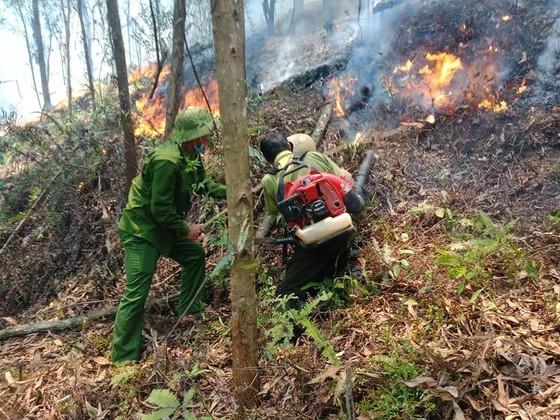 Lại xảy ra cháy rừng tại Hà Tĩnh ảnh 7