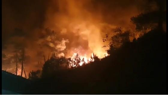 Khống chế đám cháy rừng trong đêm ở Hà Tĩnh ảnh 5