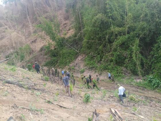 Điều tra, làm rõ nguyên nhân để xảy ra các vụ cháy rừng ở Hương Sơn, Hà Tĩnh ảnh 3