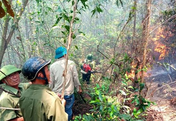 Điều tra, làm rõ nguyên nhân để xảy ra các vụ cháy rừng ở Hương Sơn, Hà Tĩnh ảnh 2