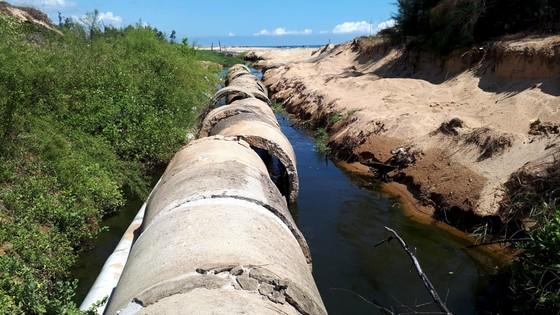 Mùi hôi thối bên cơ sở nuôi tôm xả nước bẩn ra môi trường ảnh 2