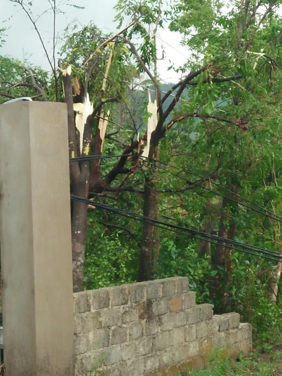 Hà Tĩnh: Lốc xoáy làm 2 người bị thương, nhiều nhà dân bị tốc mái ảnh 5