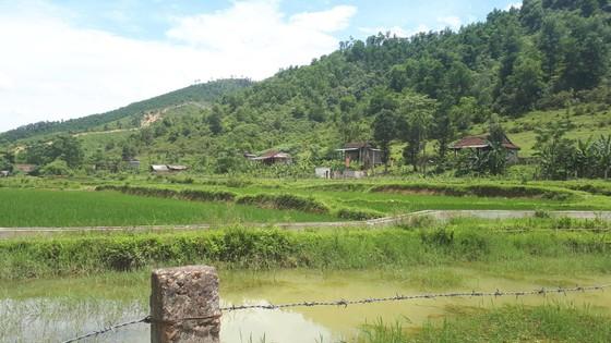 Hà Tĩnh: Vẫn chưa liên lạc được với 7 người dân tộc Chứt vào rừng lấy lá nón ảnh 1