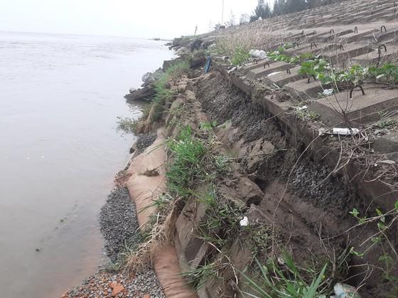 Đê chắn sóng ven biển ở Hà Tĩnh bị sạt lở sau mưa lũ ảnh 9