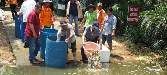 VWS tái sinh nguồn thủy sản cho Rạch Chiếu ảnh 1