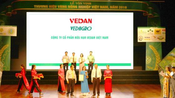 Vedan nhiều năm liền đạt giải thưởng Thương hiệu vàng nông nghiệp Việt Nam ảnh 1