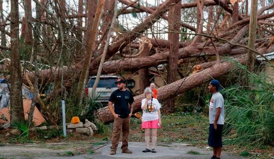 Siêu bão Michael tấn công Florida: 17 người chết, một căn cứ quân sự bị san bằng, cả thị trấn bị xóa sổ ảnh 5