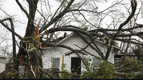 Siêu bão Michael tấn công Florida: 17 người chết, một căn cứ quân sự bị san bằng, cả thị trấn bị xóa sổ ảnh 50