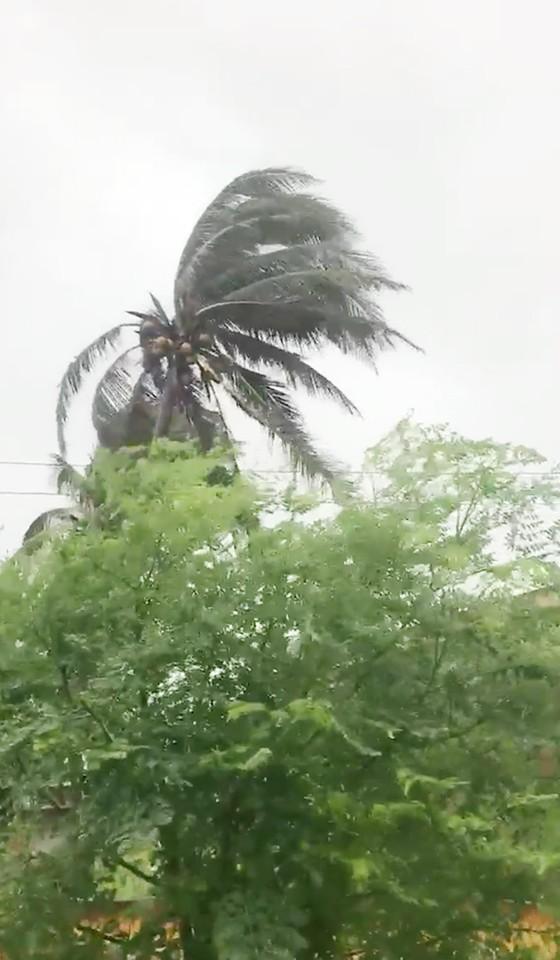 Bão số 9 sắp đổ bộ, Nhiệt điện Vĩnh Tân tạm dừng vận hành, từ chiều nay TPHCM sẽ mưa lớn ảnh 4