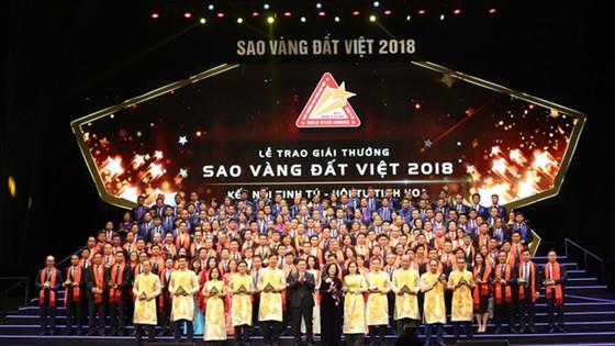 Các doanh nghiệp đạt giải thưởng Sao Vàng Đất Việt 2018 ảnh 1