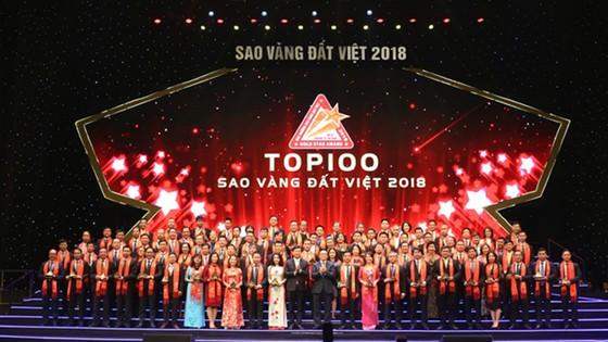 Các doanh nghiệp đạt giải thưởng Sao Vàng Đất Việt 2018 ảnh 2